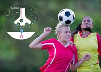Heading a football causes impairment of brain function